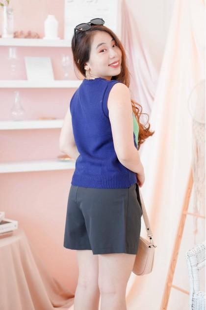 Ivy League Knit Vest in Dark Blue